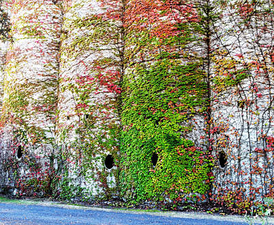 Photograph - Fall Silos by Holly Blunkall