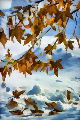 Photograph - Fall Snow On Maple Impressionistic by Scott Campbell