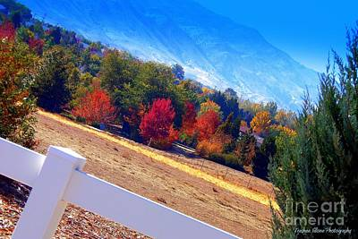 Photograph - Fall Spectacle by Bobbee Rickard