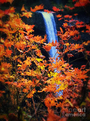 Photograph - Fall Splendor by Cynthia Lagoudakis
