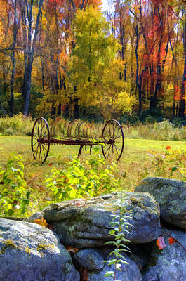 Field Photograph - Fall Splendor by Donna Doherty