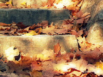 Photograph - Fall Staircase by France Laliberte