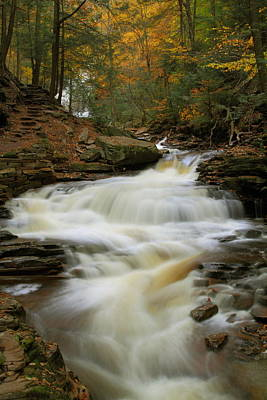 Fall Stream At Ricketts Glen State Park Print by Jetson Nguyen