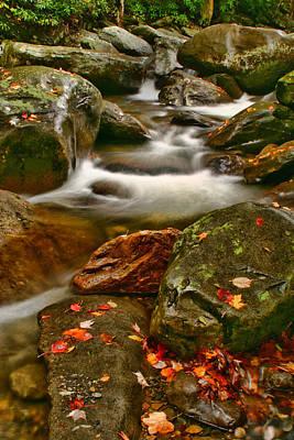 Photograph - Fall Stream by Shari Jardina
