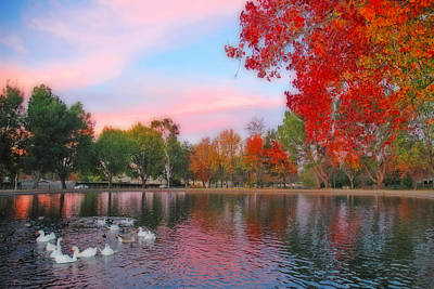 Autumn Photograph - Fall Sunset At The Pond by Lynn Bauer
