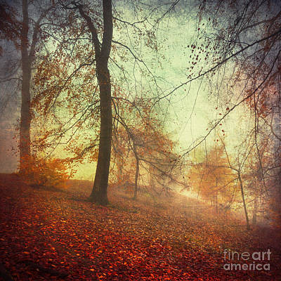 Licht Wall Art - Photograph - Fall Tapestry by Dirk Wuestenhagen