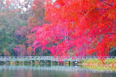 Photograph - Fall Time  by Annette Allman