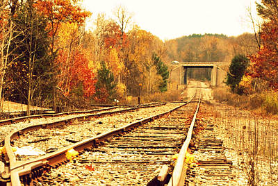 Photograph - Fall Tracks by Stephanie Grooms