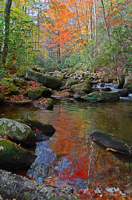 Fall Tranquility On The Middle Saluda River Art Print by Mary Anne Baker