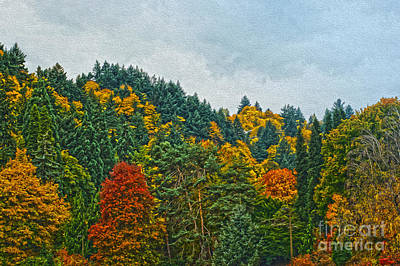 Fall Trees Art Print by Nur Roy
