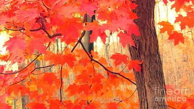 Photograph - Fall Universe by France Laliberte
