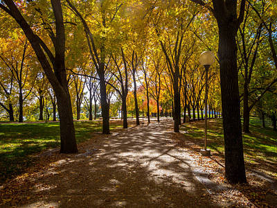 Photograph - Fall Walk by David Coblitz