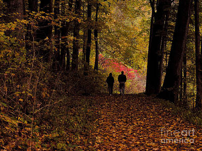 Photograph - Fall Walk by Tom Griffithe