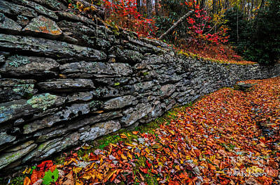 Photograph - Fall Wall by Randy Rogers