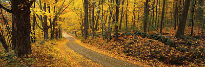 Autumn Road Photograph - Fall Woods Monadnock Nh Usa by Panoramic Images