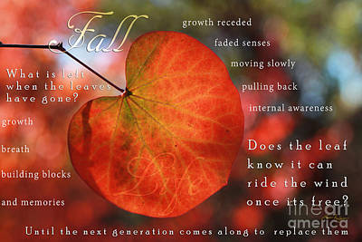 Digital Art - Fall Words And Colors by Lisa Redfern