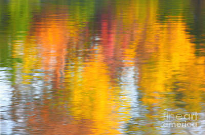 Photograph - Fallcolor In Water by Charline Xia