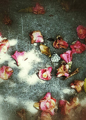 Photograph - Fallen Floral by Yen