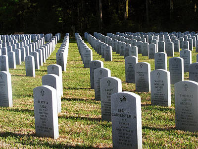 Photograph - Fallen Heroes by Michelle Hoffmann