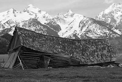 Photograph - Fallen House In The Wilderness by Alex Llobet