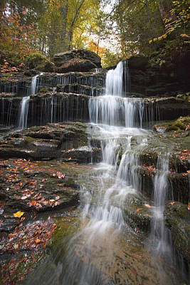 Photograph - Fallen Leaves On The Nameless Waterfall by Gene Walls