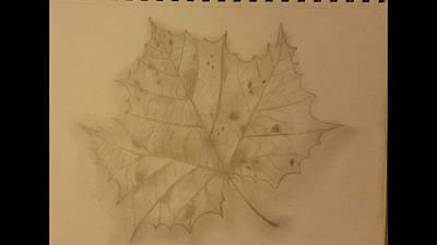 Fallen Leaf Drawing - Fallen One by Lauren Hinkle