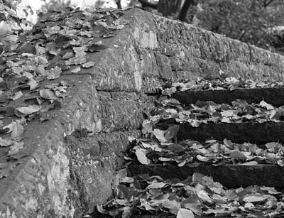 Photograph - Fallen Steps Of Stone by Miguel Winterpacht