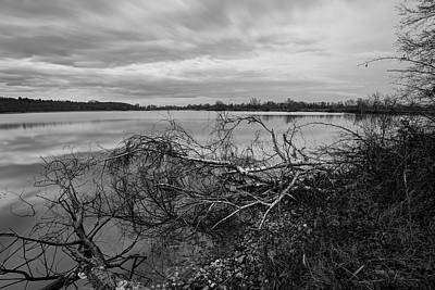 Wave Photograph - Fallen Trees At The Lake by Ivan Slosar