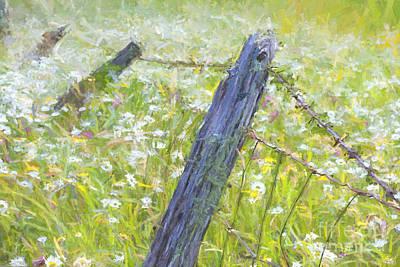 Photograph - Falling Amongst The Flowers by Lori Dobbs