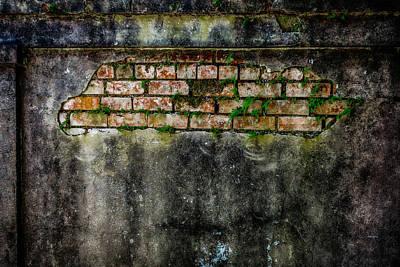 Photograph - Falling Apart  by Melinda Ledsome