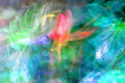 Photograph - Falling Petal Abstract Blue Green Pink A by Heather Kirk