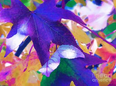 Photograph - Falling Shades Of Purple by Diane Miller