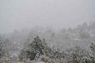 Photograph - Falling Snow In April In Utah by rd Erickson