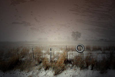 Photograph - Falling Softly by Mark  Ross