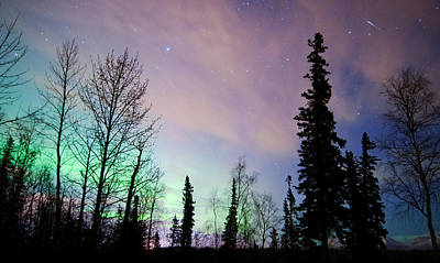 Falling Star And Aurora Art Print by Ron Day