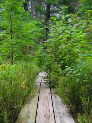 Digital Art - Fallison Lake Board Walk by Geoff Strehlow