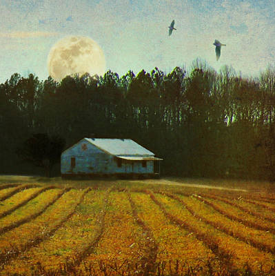 Photograph - Fallow Moon by Deborah Smith
