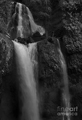 Green Color Photograph - Falls Creek Falls by Keith Kapple