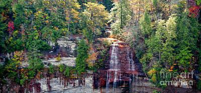 Photograph - Falls Creek Falls by Sandra Clark