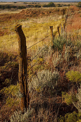 Photograph - Fall's Fenceline by Scott Bean