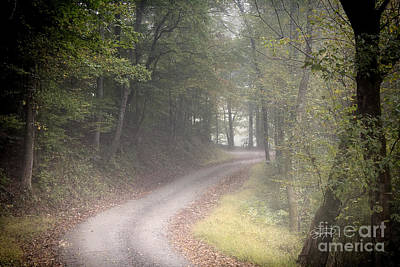 Photograph - Fall's Fog by Cris Hayes