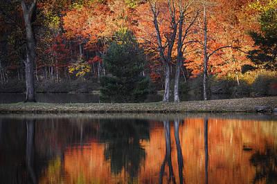 Fall's Natural Fire Art Print by Lynn Bauer