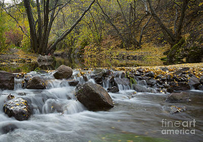 Photograph - Falls On Rock Creek by Idaho Scenic Images Linda Lantzy