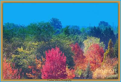 Photograph - Falls Work Of Art by Bobbee Rickard