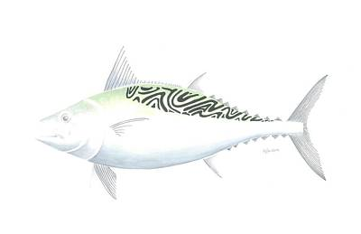 False Albacore Art Print