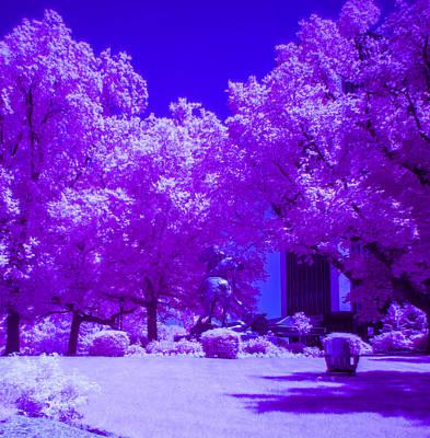 Photograph - False Color Infrared Photo Of Stevens Campus by John Dryzga