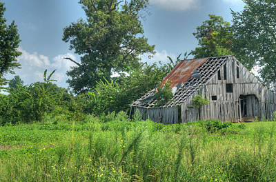 Family Barn 1 Art Print by Douglas Barnett