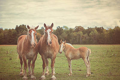 Family Art Print by Carrie Ann Grippo-Pike