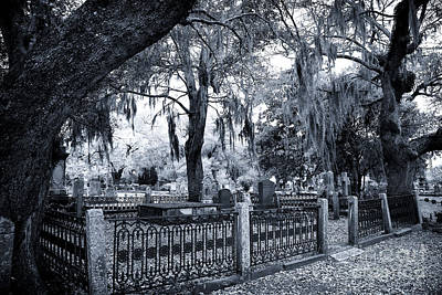 Photograph - Family Plot by John Rizzuto