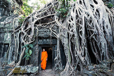 People Photograph - Famous Big Tree Inside Ta Phrom Temple - Angkor - Cambodia by Matteo Colombo